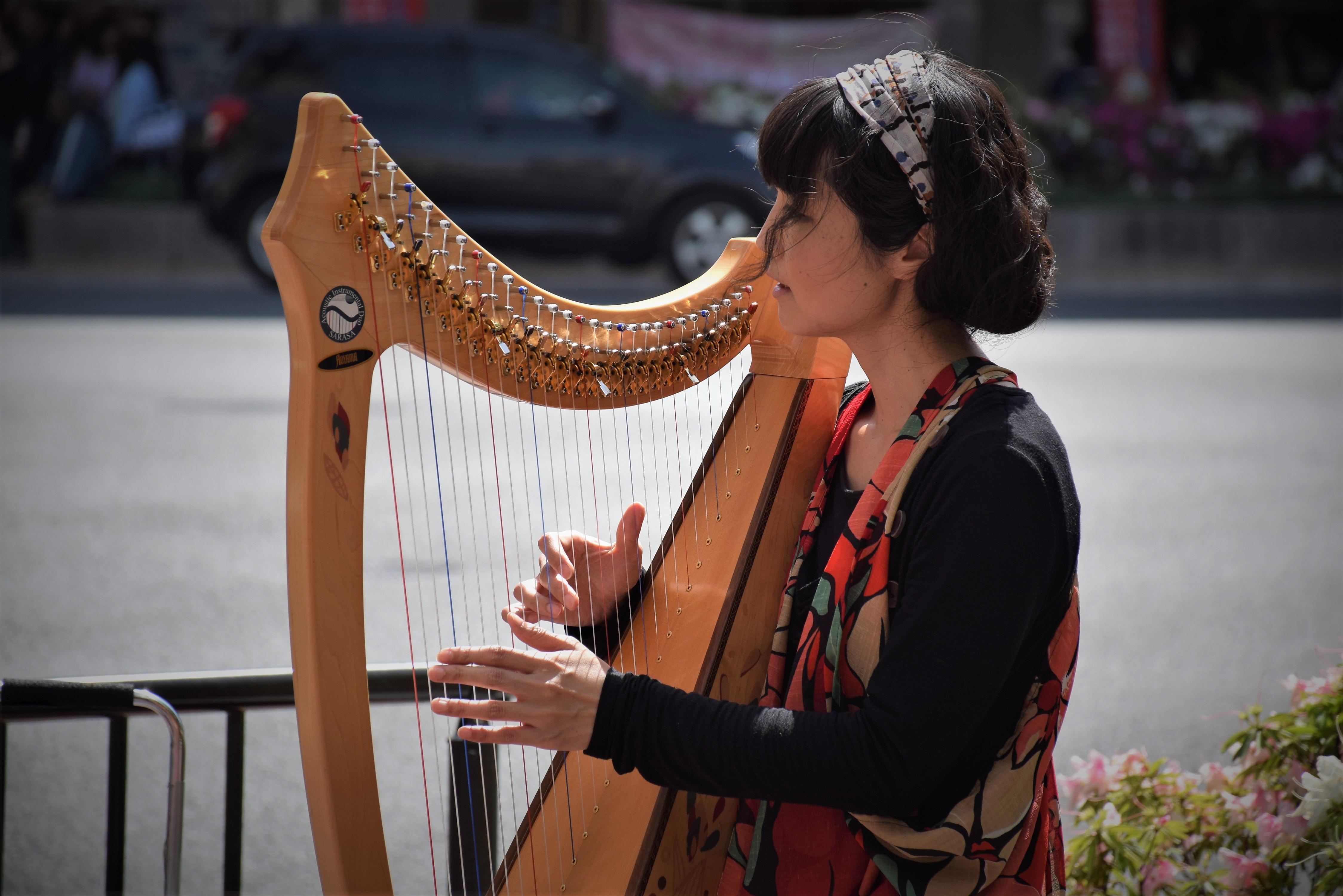 Die Harfenspielerin in Wien | story.one