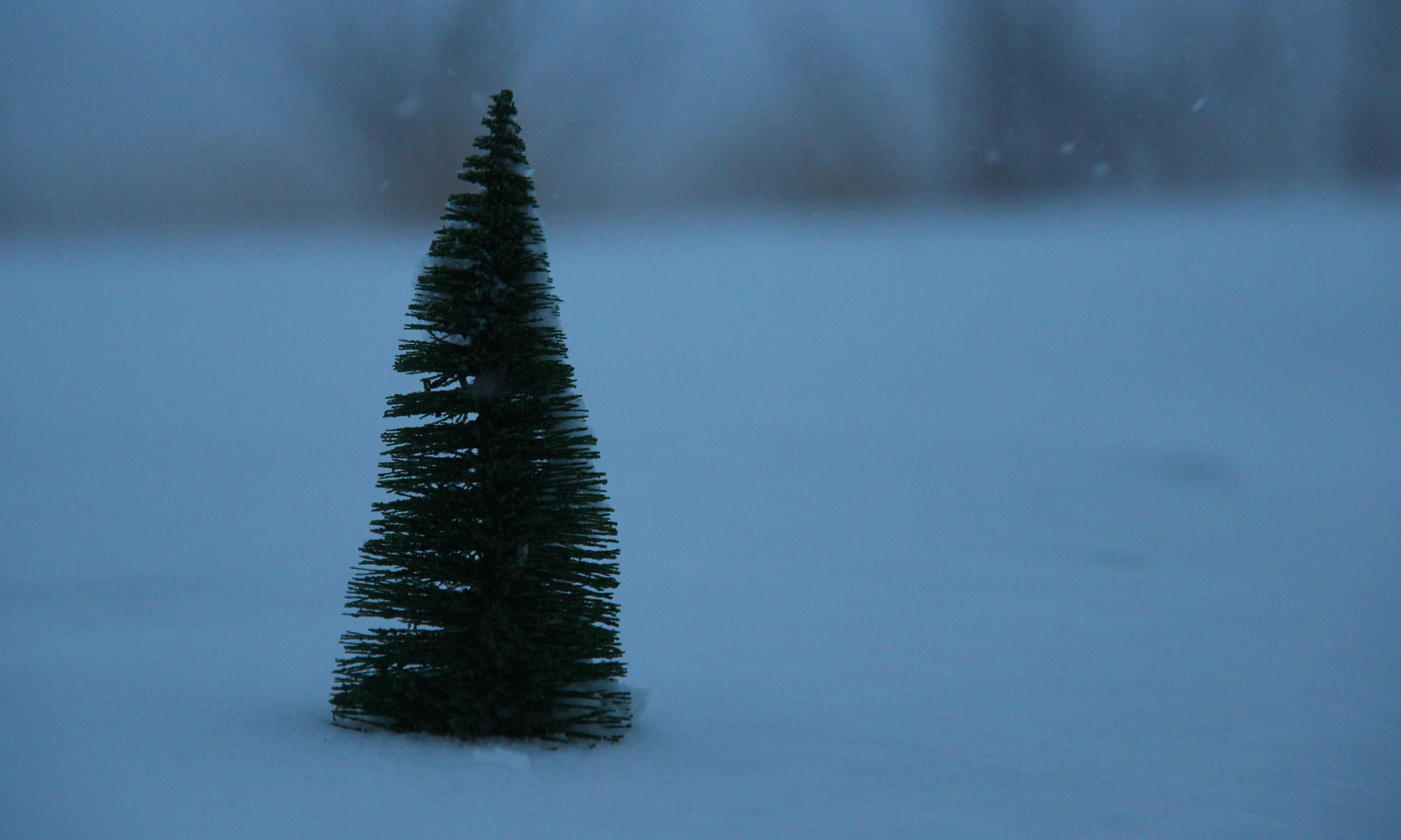 Wo der Weihnachtsmann wohnt | story.one