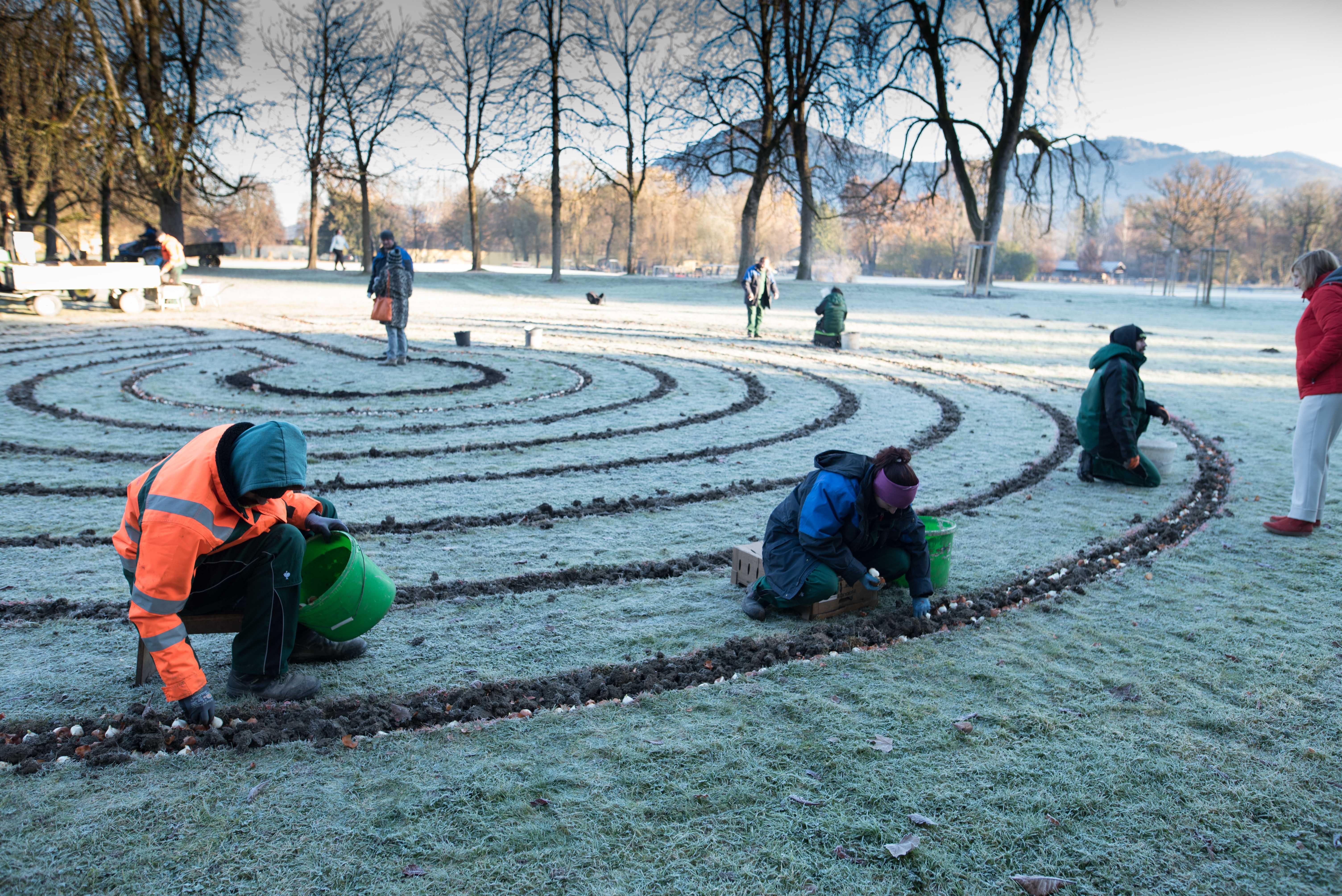 Das Tulpenlabyrinth   story.one