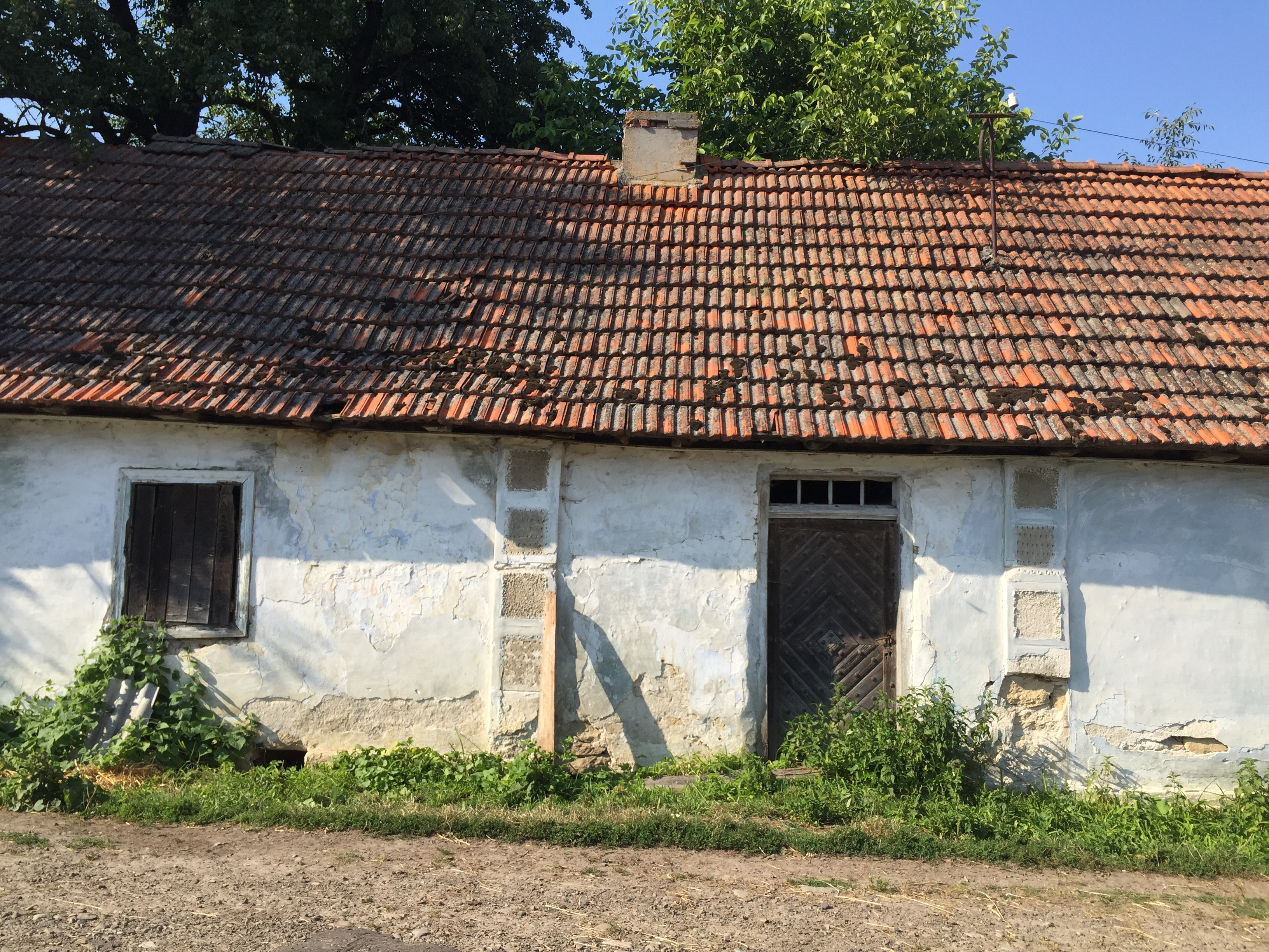 Poor and R(e)ich in Galicia | story.one