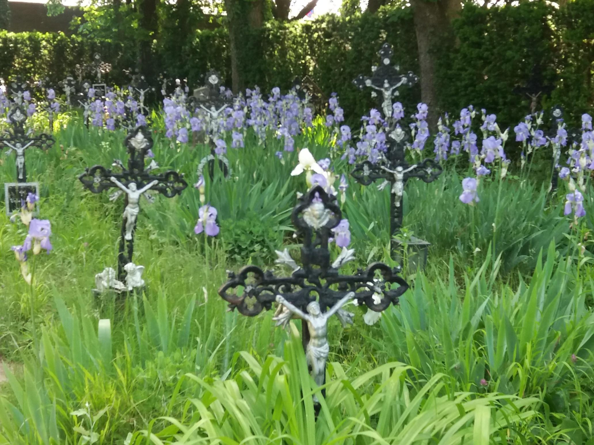 Friedhof der Namenlosen | story.one