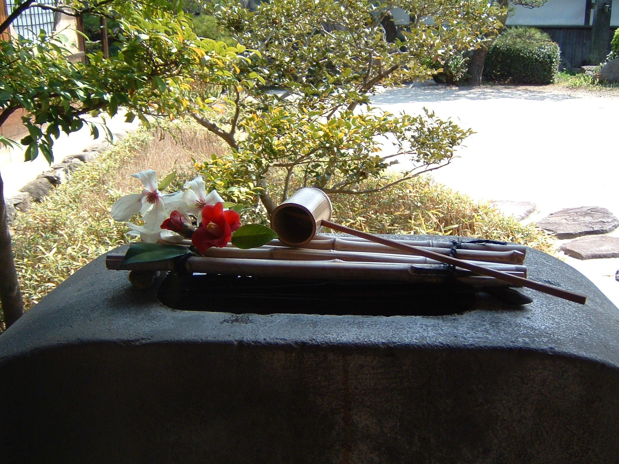 Ob Karlchen schon in Japan ist? | story.one