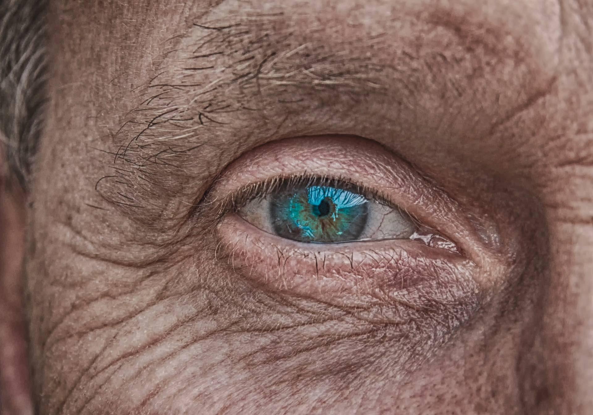 Die Augen sind rund, die Bildschirme eckig | story.one