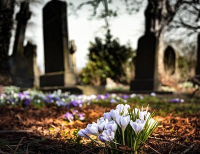Frühling am Friedhof | story.one