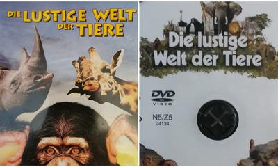 Die lustigen Tiere der Welt | story.one