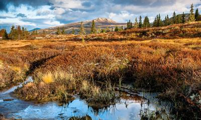 Wandern auf Norwegisch | story.one
