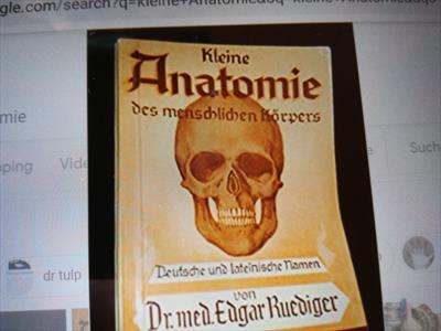Die poetische Anatomie | story.one