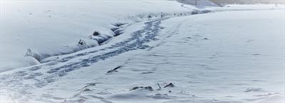 Spuren im Schnee! | story.one