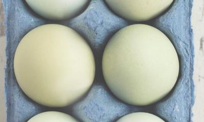 Zwei Eier im Glas | story.one