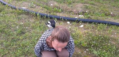 Die hat doch einen Vogel | story.one