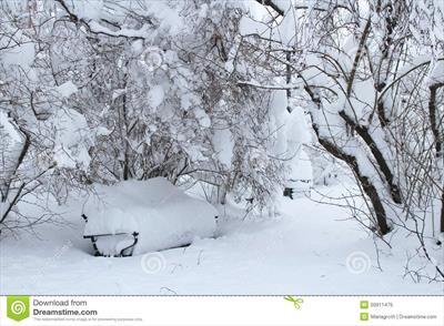 Vorweihnachtszeit - es schneit, es schneit | story.one