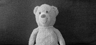 Der Bär ist los | story.one