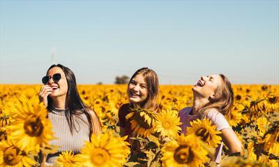 Die drei Schwestern | story.one