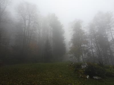 Blind Date mit der Natur   story.one