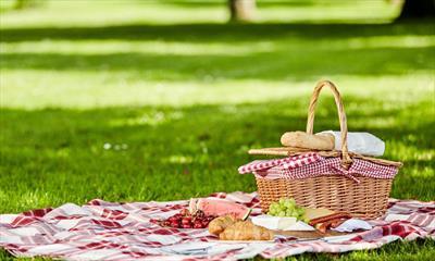 Auf der Picknickdecke | story.one