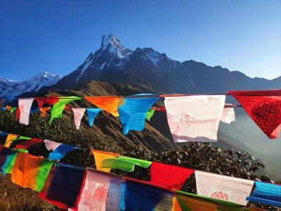 Taking Tea with the Dalai Lama | story.one