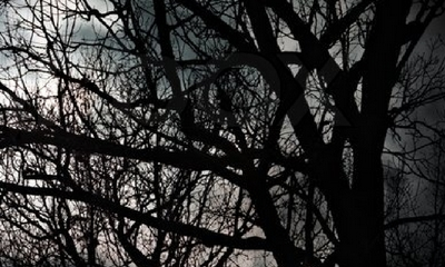 Vampire in Südtirol? | story.one