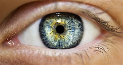 Augen | story.one