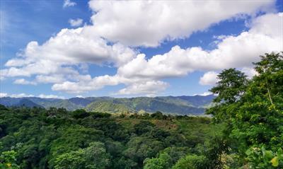Schmetterlinge in Nicaragua | story.one