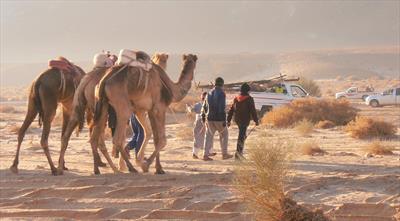 baraka – Glück und Segen = ein Kamel | story.one