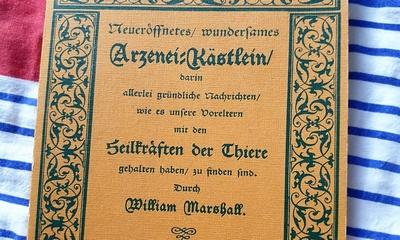 Uraltes Wissen – Wieder hochaktuell! | story.one