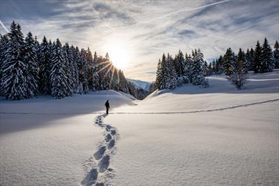 Fußstapfen im Schnee | story.one