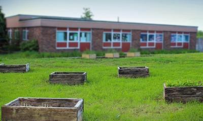 Grundschule Lienen, in Elsfleth   story.one