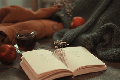 Liebes Coronatagebuch!   story.one