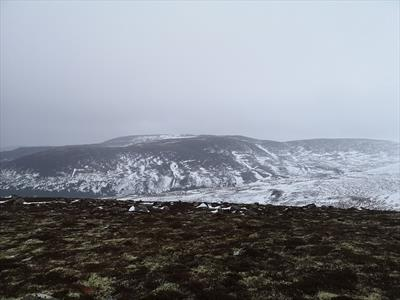 Meeting a juniper in a Scottish winter storm | story.one