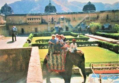Elefantenritt nach Amber | story.one