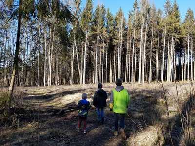 Waldbaden gegen den Corona - Blues | story.one