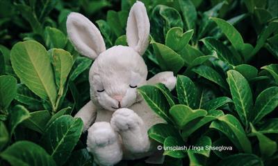 Sagt den Kindern endlich, was zu Ostern geschah | story.one