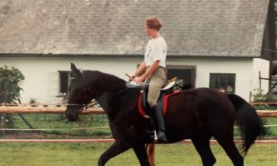 Das halbe Pferd | story.one
