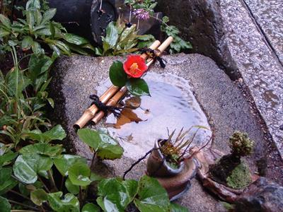 Doko demo mizu – Wasser überall | story.one