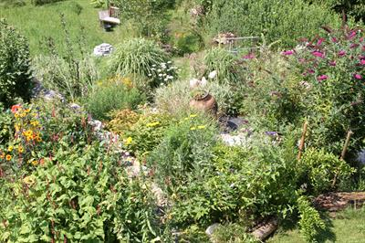 Garten-Klima als Lebens-Elixier | story.one