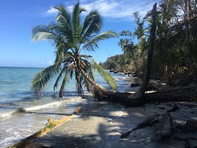 Karibikabenteuer | story.one
