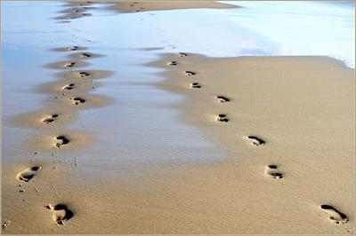 Vier Füße, zwei Herzen u. ein großes Glück | story.one