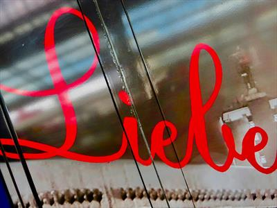 Das Risiko namens Liebe | story.one