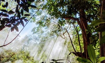 Costa Rica | story.one