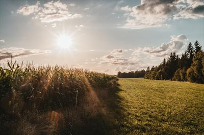 Die Natur sorgt für uns | story.one