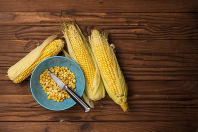 Nur eine Dose Mais | story.one