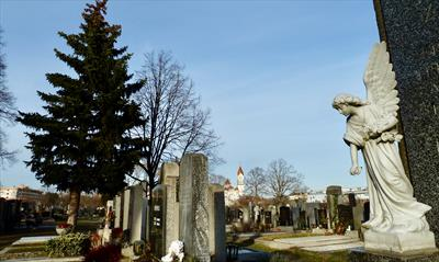 Cemeteries   story.one