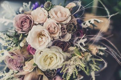 Die Hochzeit | story.one
