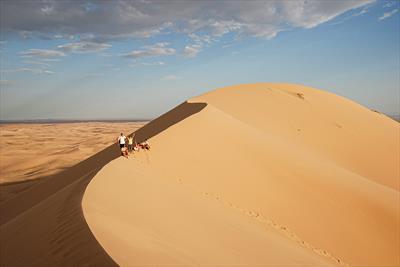 Wüste. Gobi.   story.one