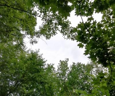 Kirche, Kugeln, Kolomansberg | story.one