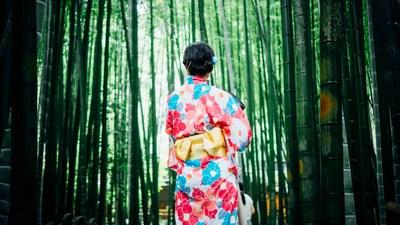 Apfelstrudelseminar für Japaner | story.one