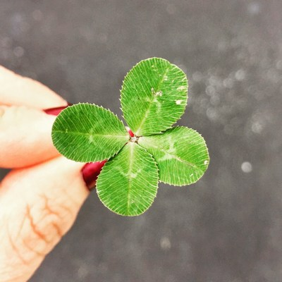 Das stille Glück | story.one