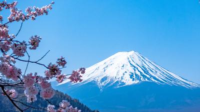 Die Reise nach Tokio | story.one