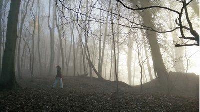 Der Waldläufer | story.one